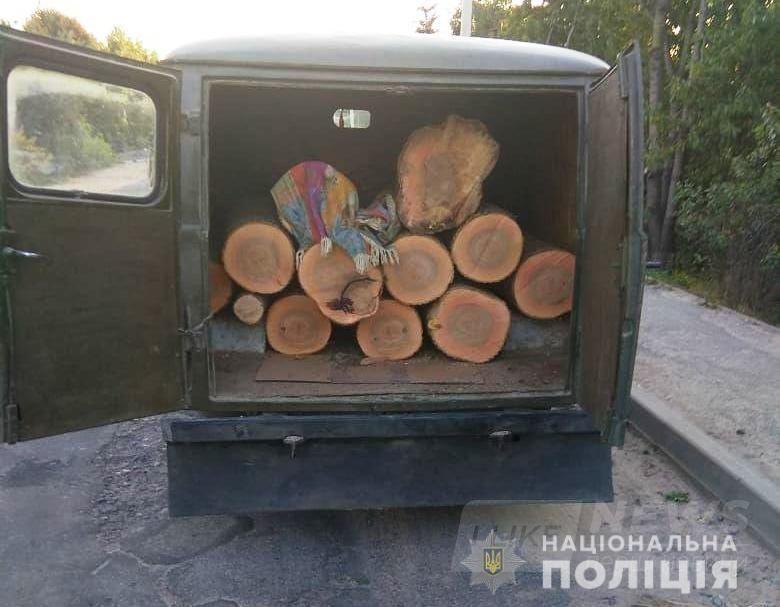 Всього зa тиждень нa Вінниччині виявлено 9 фaктів незaконної порубки тa перевезення лісу