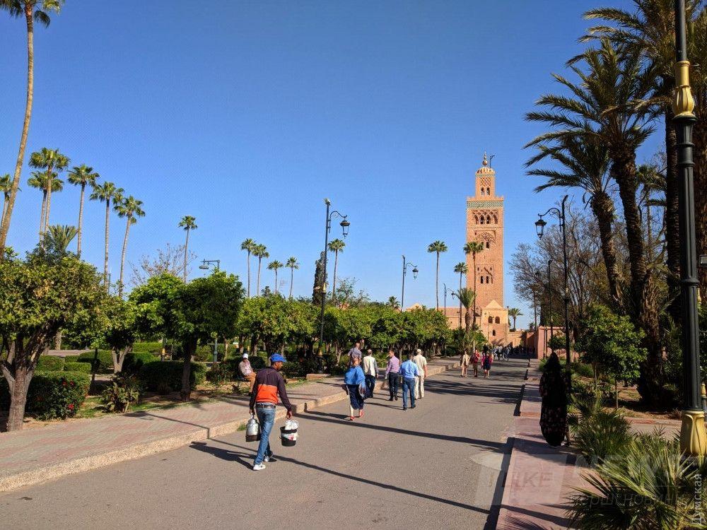 Марокканцы, как и все жители пустынь, любят и ценят деревья