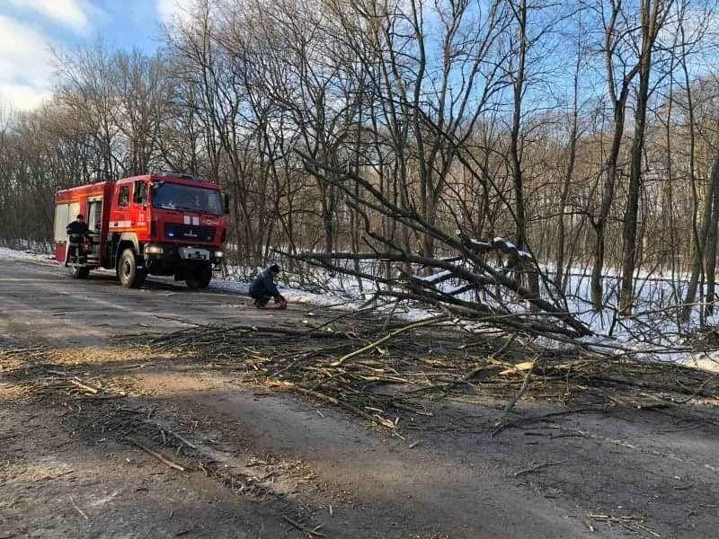 На Вінниччині негода «наламала дров»: з наслідками боролися рятувальники (ФОТО)